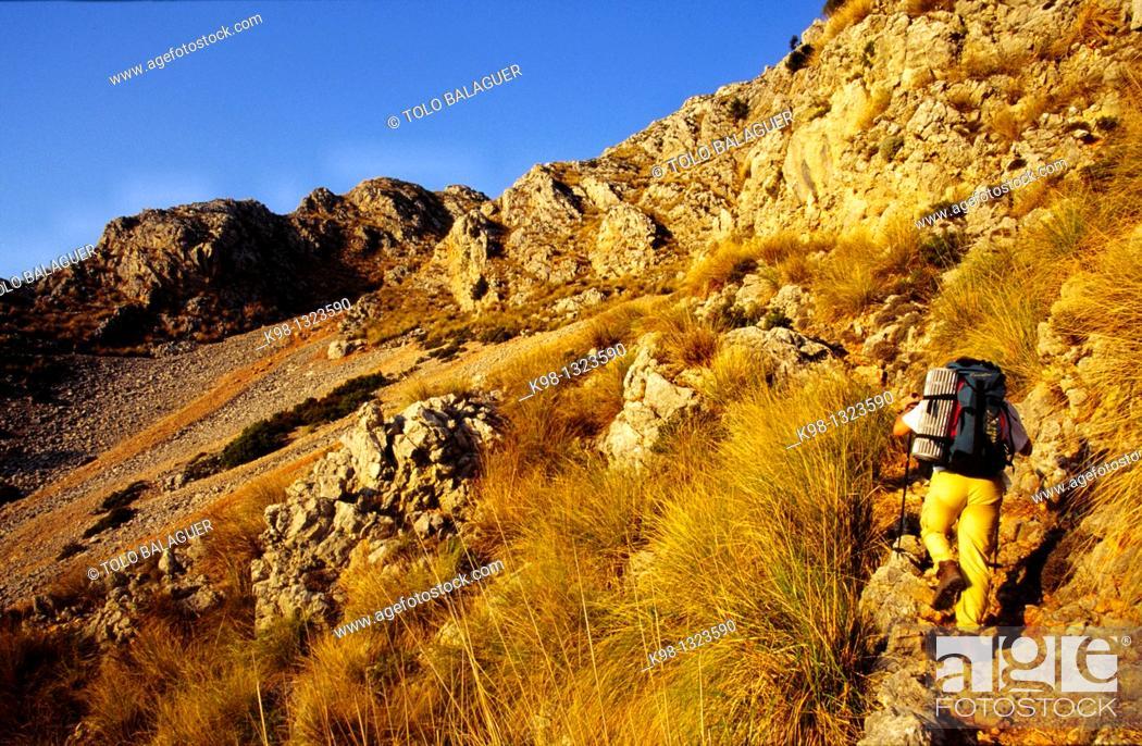 Stock Photo: Ascending Puig Tomir hill, Serra de Tramuntana, Escorca, Majorca, Balearic Islands, Spain.
