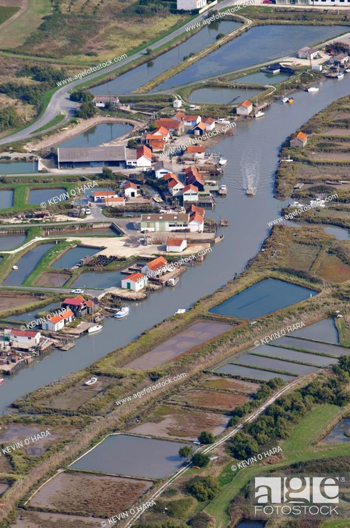 Stock Photo: Aerial view. The oyster road between Le Château and Boyardville signposted ' Route des huîtres ', winds between channels, oyster huts and claires.