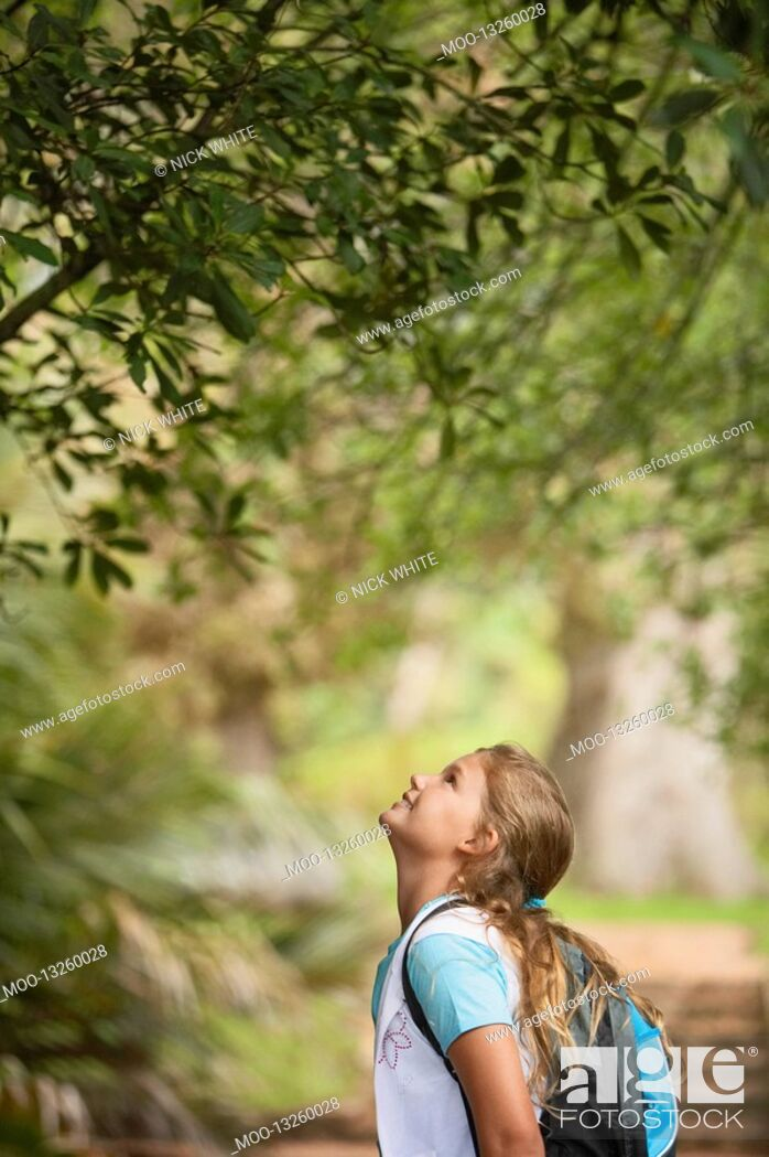 Stock Photo: Girl Looking Up at Tree.