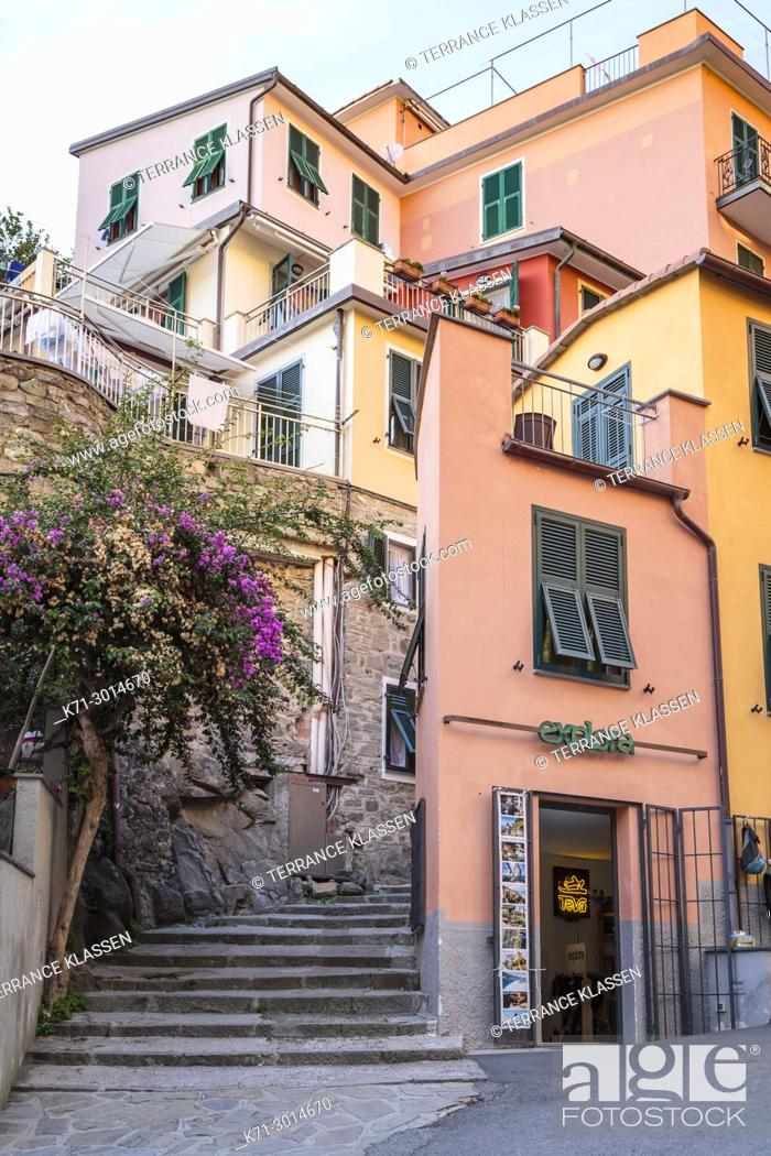 Imagen: Colorful homes in the village of Manarola, Cinque terre, Liguria, Italy, Europe.