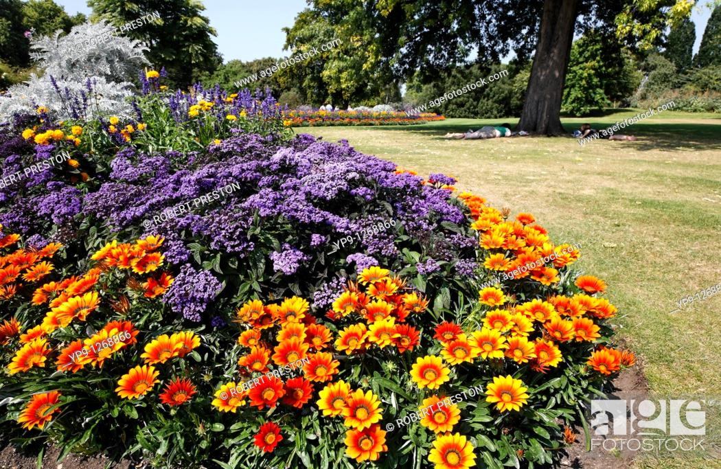 Stock Photo: Colourful flowerbeds in Hyde Park, London, UK.
