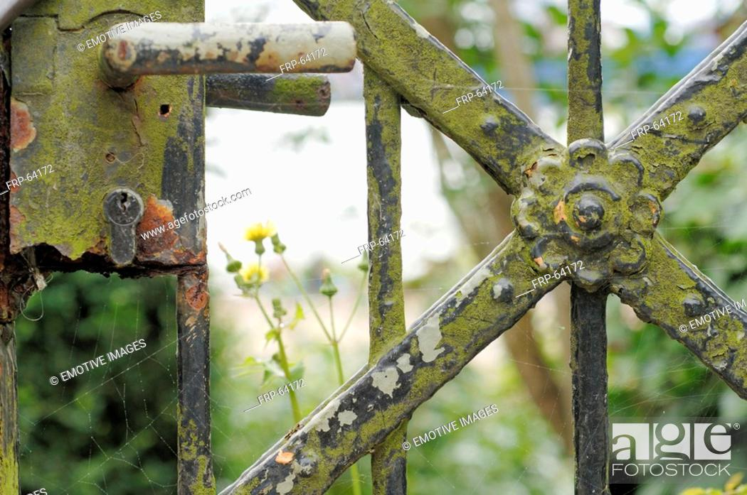 Stock Photo: Weathered garden gate - close up.