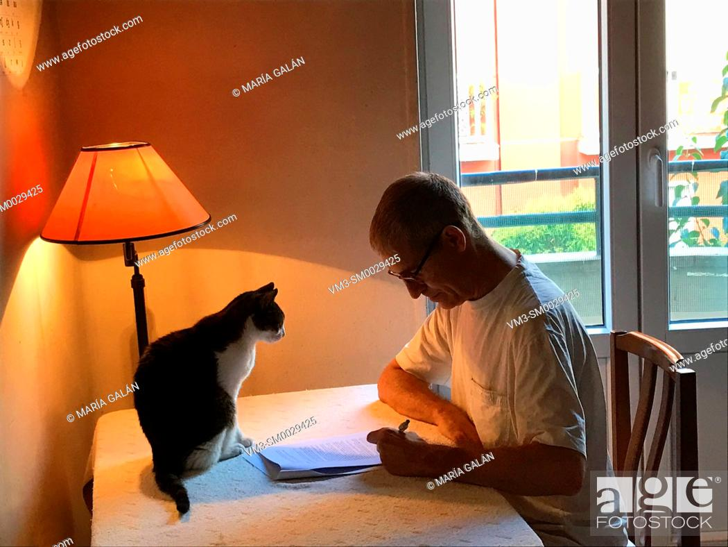Stock Photo: Man working at home with his cat.