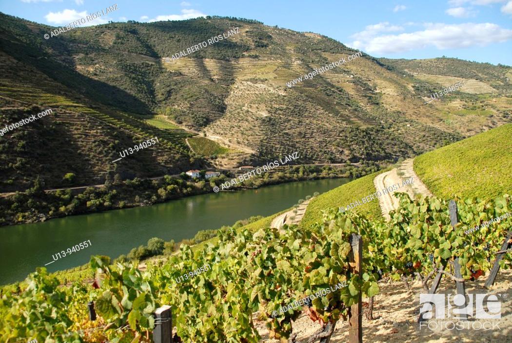 Stock Photo: Duoro river, Pinheiro, Portugal.