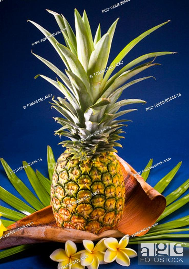 Stock Photo: Studio shot of a pineapple with flowers.