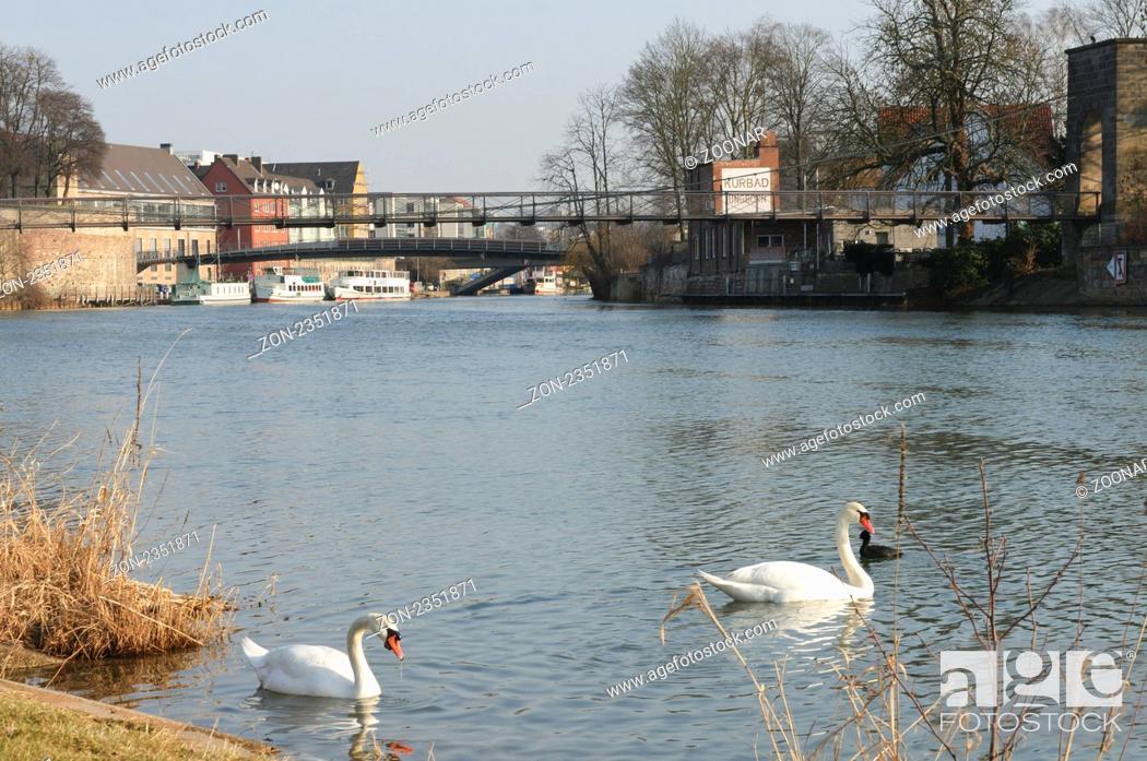 Stock Photo: Im Vordergrund das Ufer der Fulda mit zwei Schwänen, im Hintergrund das Rondell, die Drahtbrücke und dahinter die Karl-Branner-Brücke.
