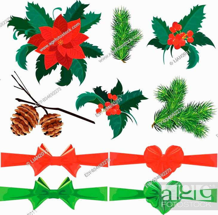 Stock Vector: Set of winter holiday plants, flowers, berries and bows. Could be used for Christmas and New Year design. Isolated on white background.