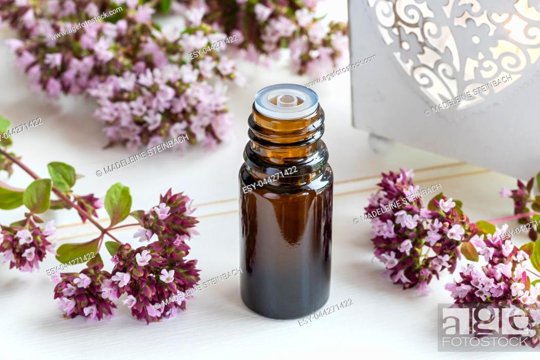 Stock Photo: A bottle of essential oil with fresh blooming oregano twigs on a white table.