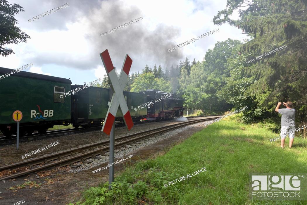 Stock Photo: 03 August 2020, Mecklenburg-Western Pomerania, Garftitz: A steam locomotive 99 783 is leaving the Garftitz station near the hunting lodge Granitz.