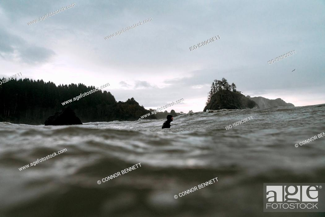 Photo de stock: Young male surfer in cold pacific ocean, surface level view, Arcata, California, United States.