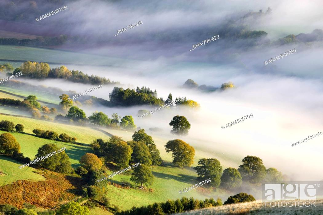 Stock Photo: Mist covered rolling countryside in the Usk Valley, Brecon Beacons National Park, Powys, Wales, United Kingdom, Europe.