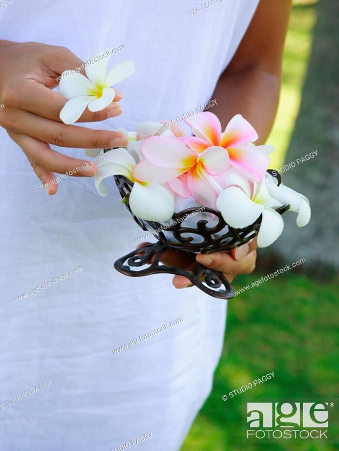 Imagen: Mid section view of a woman holding Frangipani Plumeria flowers.