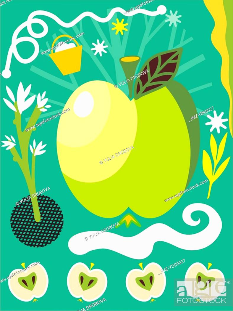 Stock Photo: An illustration about apples and apple trees.
