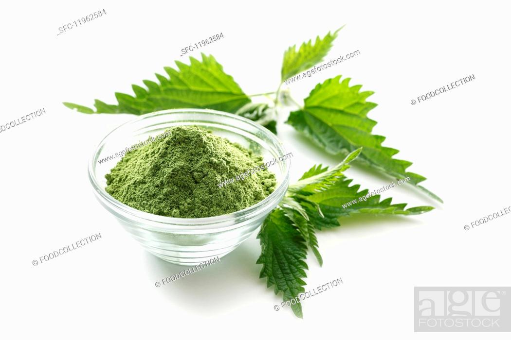 Stock Photo: Stinging nettle powder in a glass bowl.