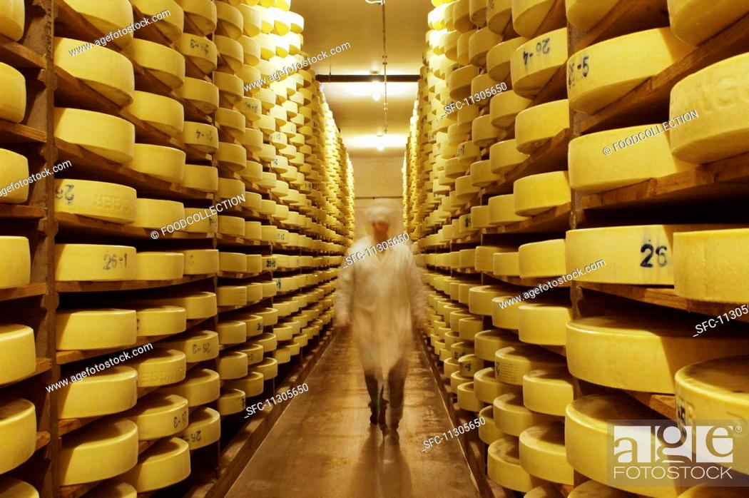 Stock Photo: Alpine cheese in a storage room at a dairy in Walchsee, Tyrol, Austria.
