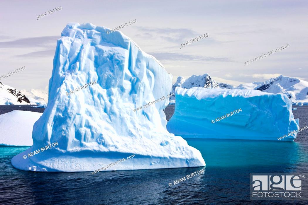 Imagen: Icebergs grounded by the shore at Paradise Bay in the Antarctic Peninsula, Antarctica, Polar Regions.