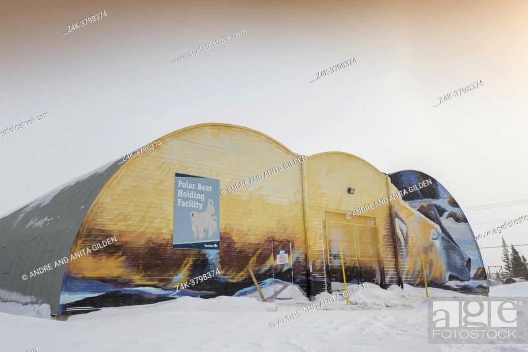 Imagen: Polar bear painted on frotn of polar bear jail, Churchill, Manitaba, Canada.