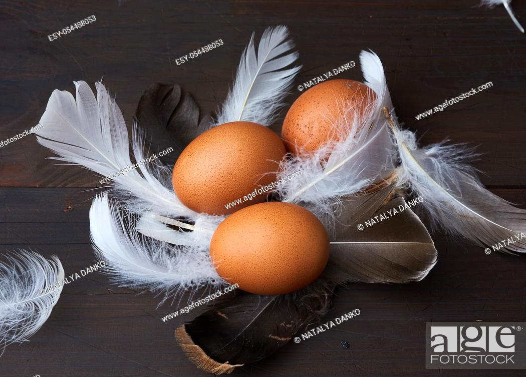 Stock Photo: three brown whole chicken eggs in the middle of white feathers on a wooden background, close up.