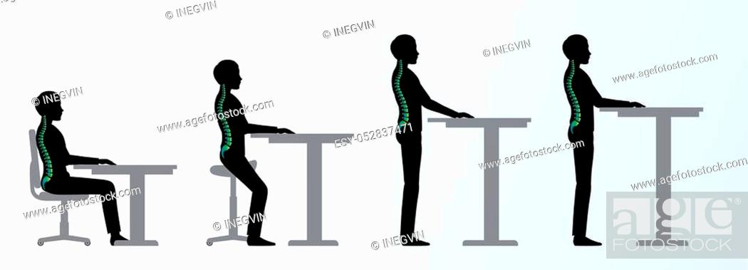 Stock Vector: ergonomic. Height adjustable desk or table sitting and standing pose of a man. Saddle chair.