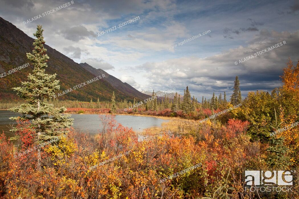 Stock Photo: Landscape of Fall Colors with kettle pond along the Denali Highway near Cantwell, Southcentral Alaska.