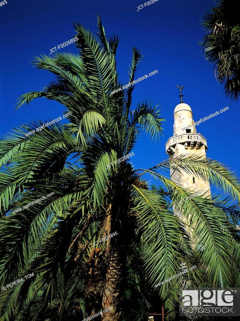 Stock Photo: Israel, Jerusalem, minaret and palm tree.