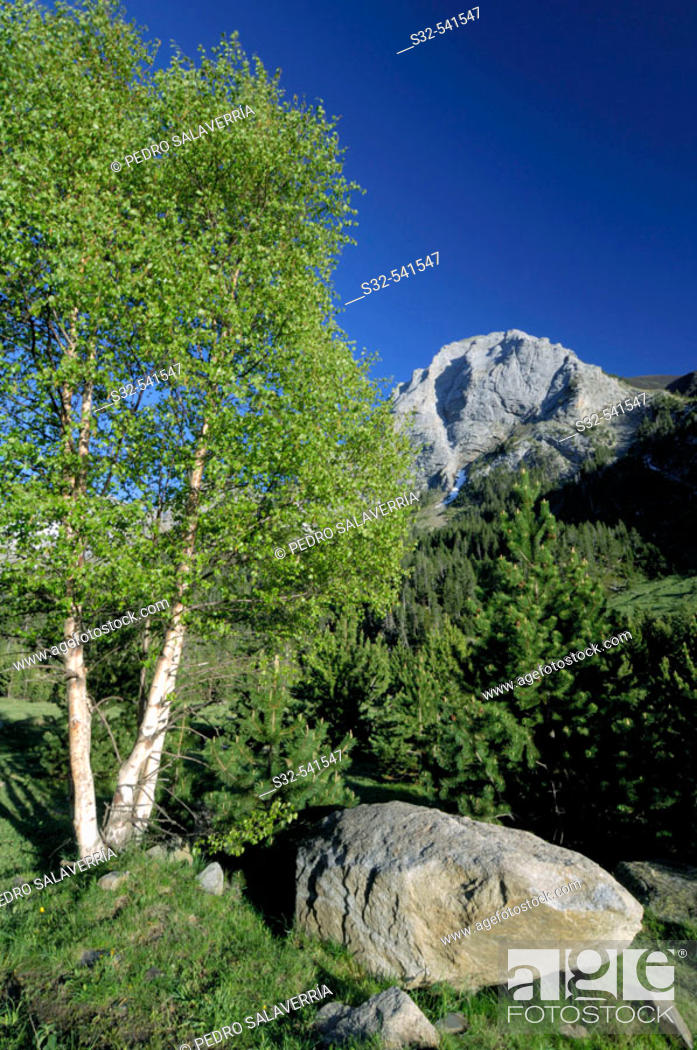 Stock Photo: Tuqueta Blanca de Vallibierna (2790 m.). Vallibierna Valley. Benasque. Huesca province, Aragón. Spain.