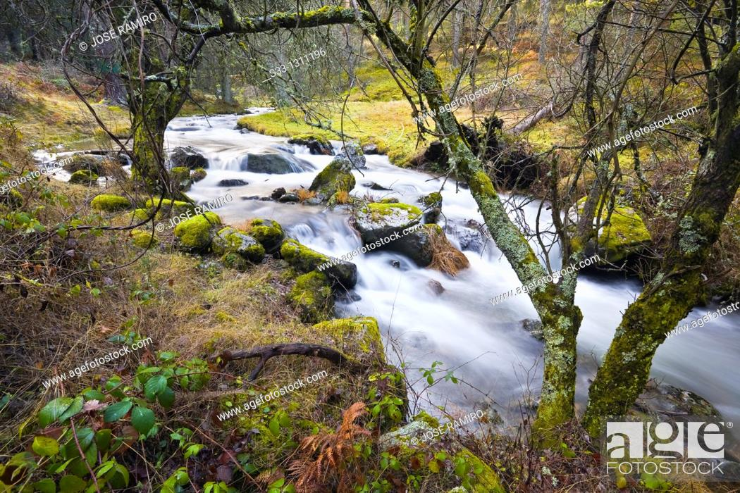 Stock Photo: Acebedas river in the Sierra de Guadarrama Segovia Castilla León Spain.