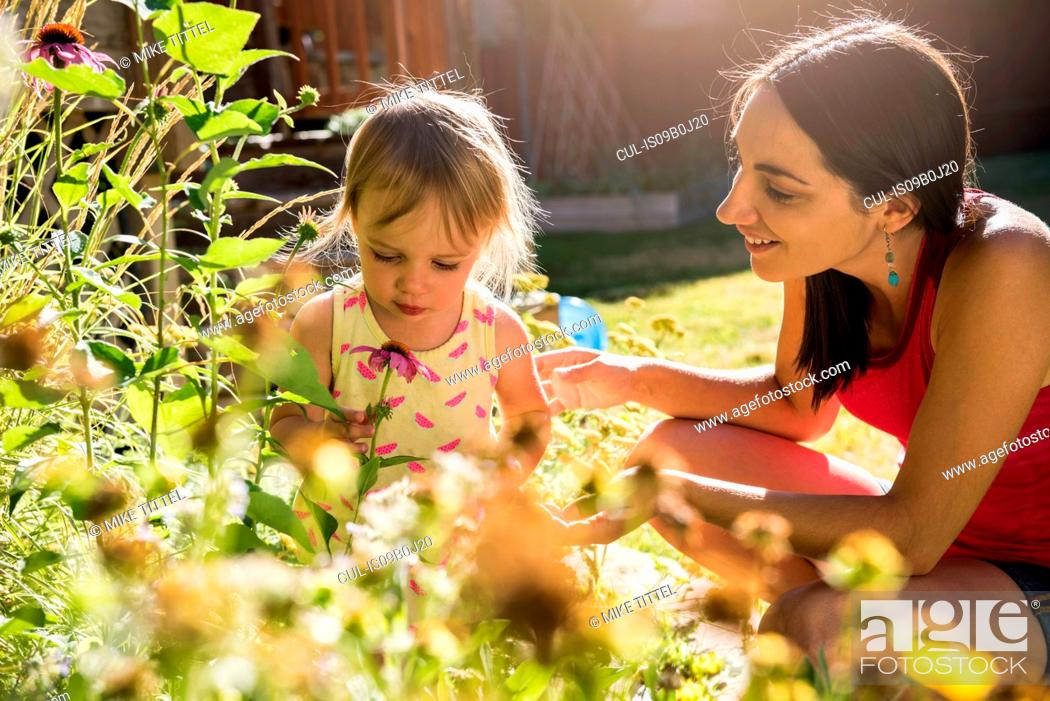 Stock Photo: Mother and young daughter tending to garden.