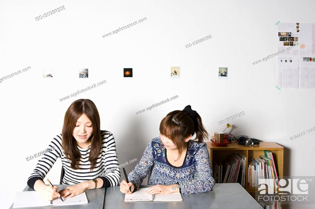 Stock Photo: Young women working on project.