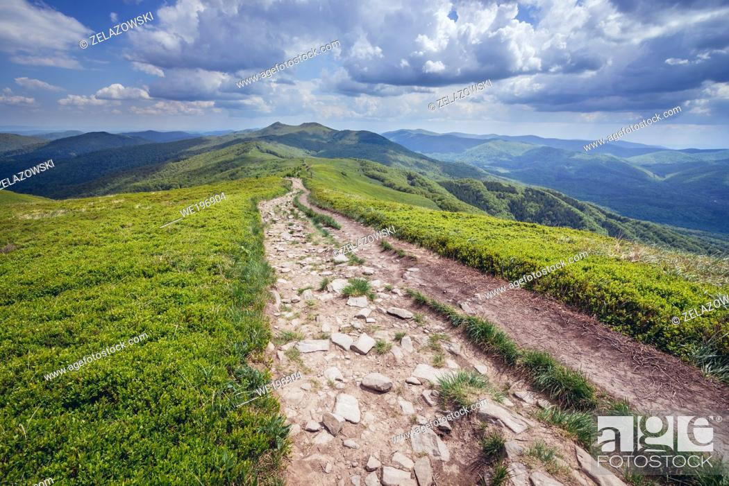 Stock Photo: Tourist path from Smerek Mount to Orlowicz mountain pass on the Wetlina High Mountain Pasture in Western Bieszczady Mountains in Poland.