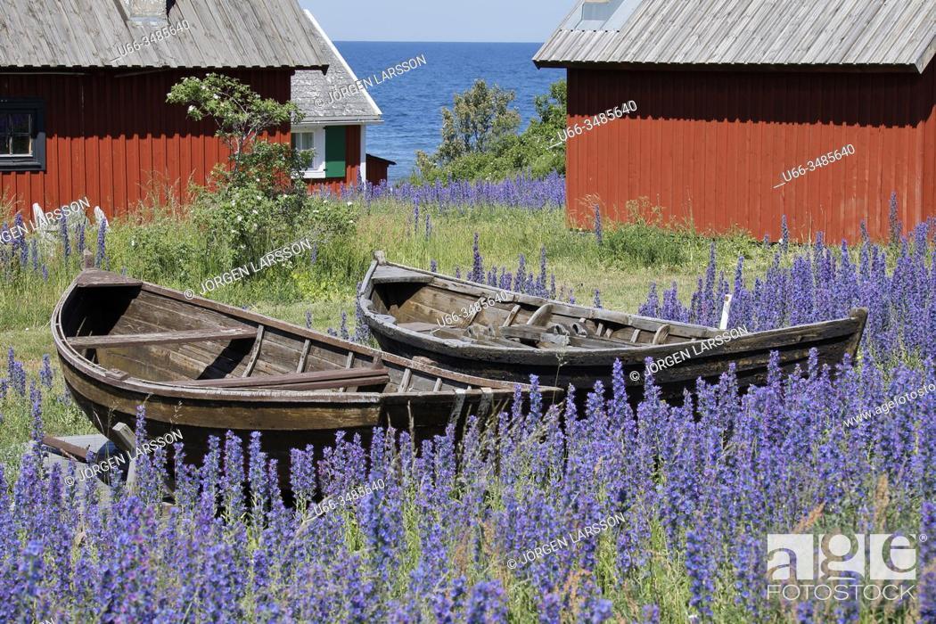 Stock Photo: Nyhamn, Gotland, Sweden.