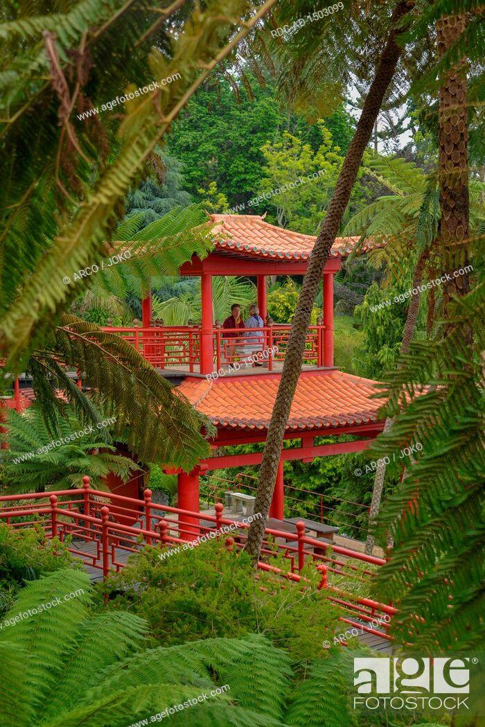 Stock Photo: Monte Palace Tropical Garden, Monte, Funchal, Madeira, Portugal.