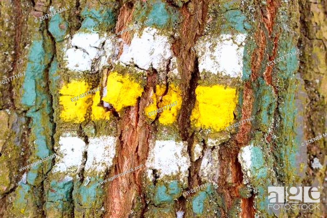 Stock Photo: tree bark texture with turistic sign.