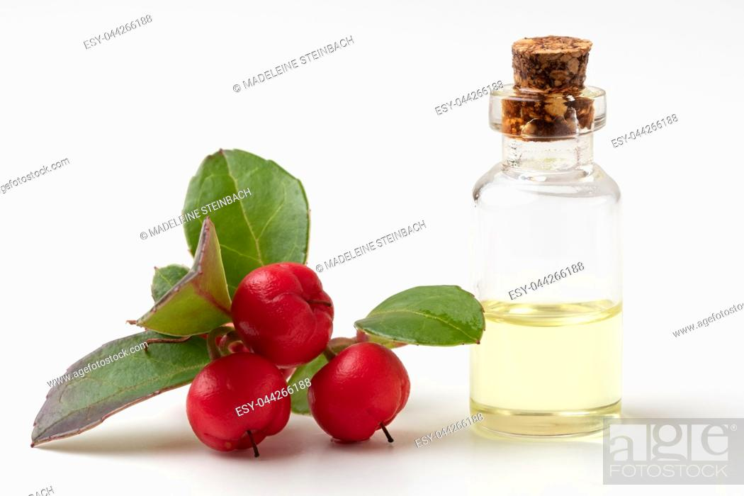 Stock Photo: A bottle of essential oil with wintergreen leaves and berries on a white background.