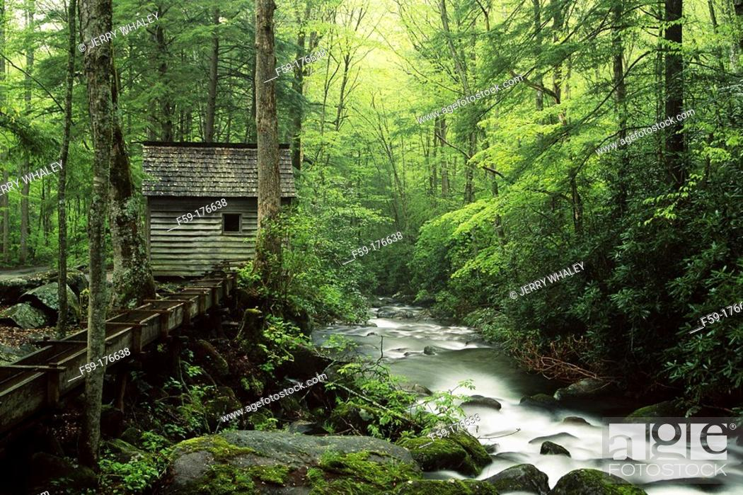 Stock Photo: Reagan tub mill. Roaring Fork. Great Smoky Mountains NP. Tennesse. USA.