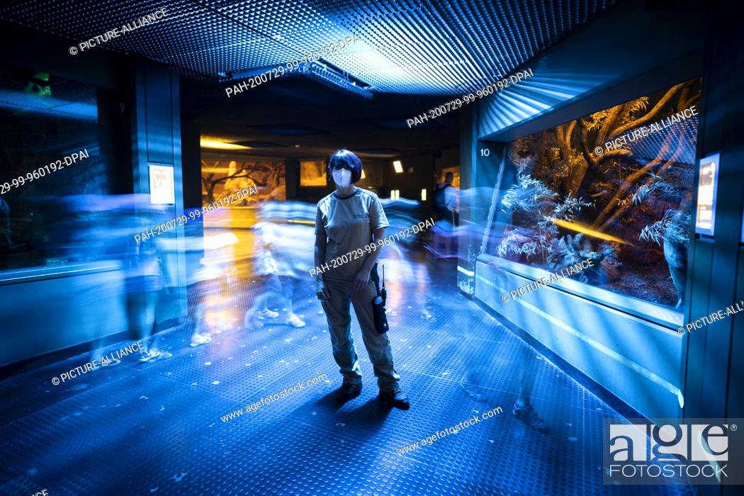 Stock Photo: 28 July 2020, Hessen, Frankfurt/Main: Station manager Astrid Parys is standing in the Grzimek House at Frankfurt Zoo in dim blue light as visitors walk past her.