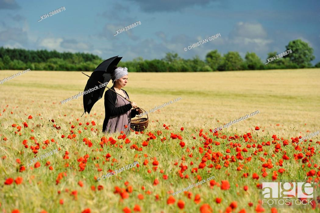 Stock Photo: young woman with sunshade in a cereal field dotted with poppies, France, Europe.