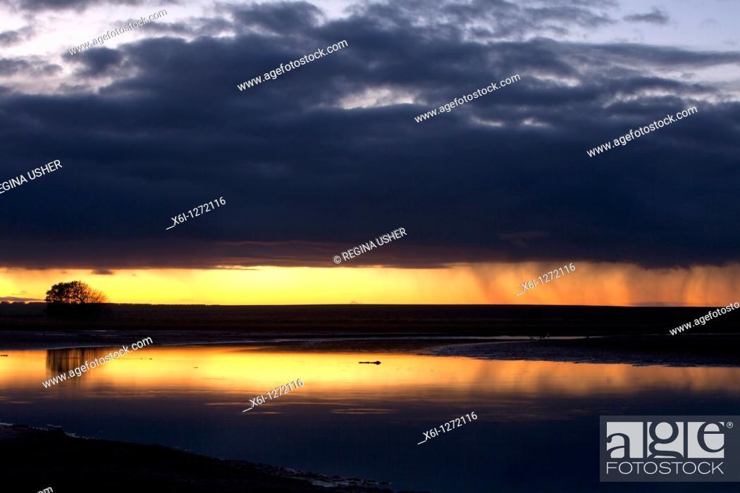 Stock Photo: Sunrise over causeway, with rain showers, Holy Island, NNR, Northumberland, England.