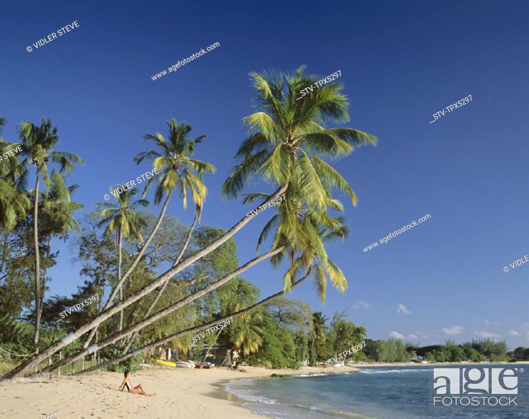 Stock Photo: Barbados, Caribbean, Holiday, Islands, Kings beach, Landmark, Palm trees, Sand, Sea, Tourism, Travel, Vacation,.