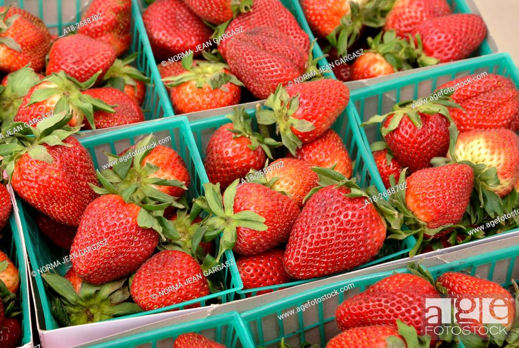 Stock Photo: Strawberries, Farmers Market, Tucson, Arizona, USA.