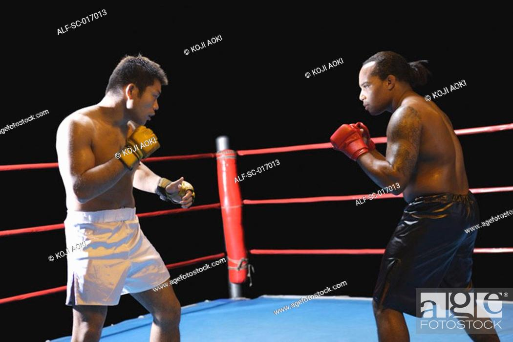 Stock Photo: Two fighters in a ring.