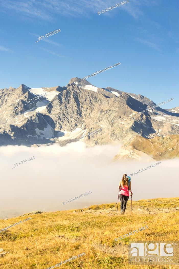 Stock Photo: Hiker walking along hill of Nivolet with Grand Aiguille Rousse in the background, Ceresole Reale, Graian Alps, Gran Paradiso National Park, Piedmont region.