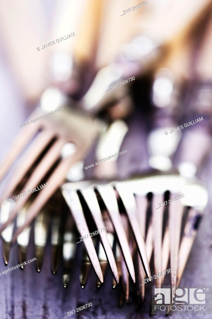 Photo de stock: Antique bone handled dining forks.