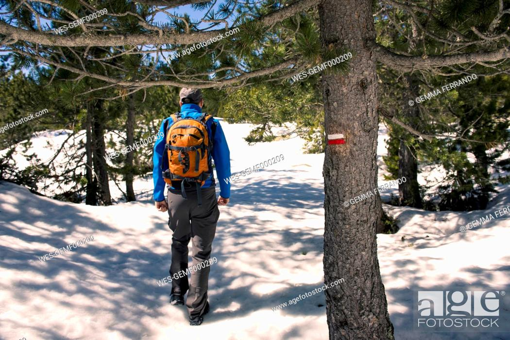Stock Photo: Spain, Catalonia, man with backpack hiking in the Pyrenees in winter.