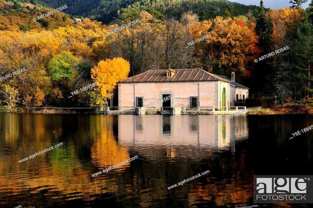 Stock Photo: La Granja Gardens  San Ildefonso, Segovia  Spain.