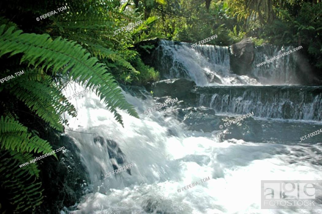 Stock Photo: Costa Rica, Arenal Volcano National Park, Tabacon, hot springs.