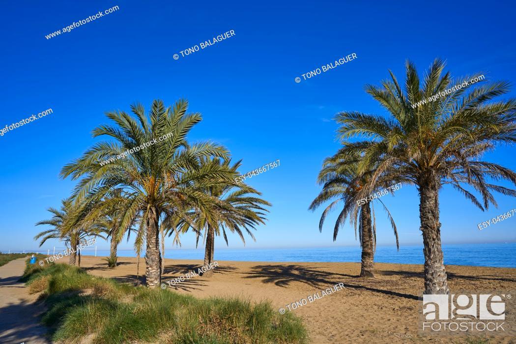 Stock Photo: Denia las Marinas beach in Alicante palm trees at Costa Blanca of Spain.