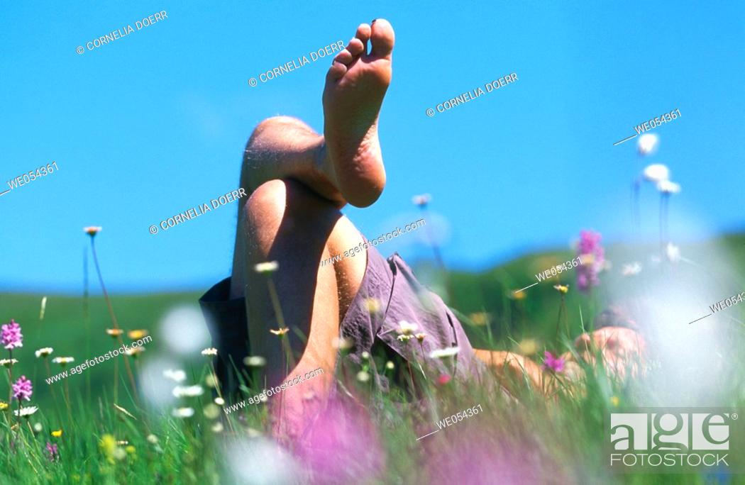 Stock Photo: Relaxing in meadow. Germany.