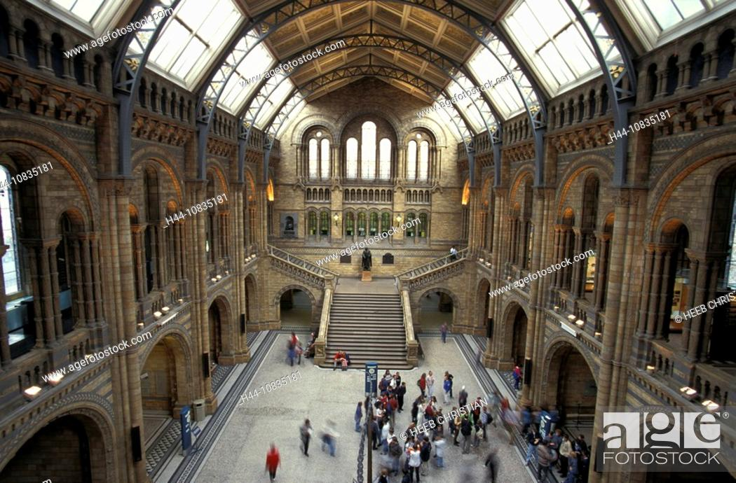 Stock Photo: UK, London, Natural History Museum, Great Britain, Europe, England, hall, people, visitors, museum, building, architec.