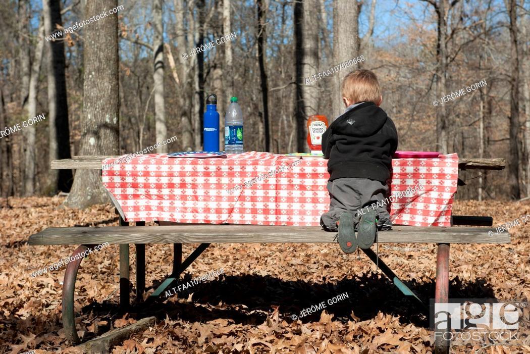 Stock Photo: Boy sitting at picnic table, rear view.